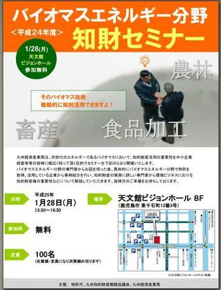 seminar 130128.JPG